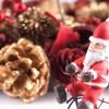 【特集】とても簡単!ネイティブの子供が歌う<br> クリスマスソング 12選!