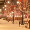 【特集】サンタをSantaとは言わない?!<br> イギリス流クリスマス(2)