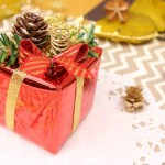 【クリスマスの英語フレーズ集】<br>「サンタさんから何もらったの?」ってなんて言う?